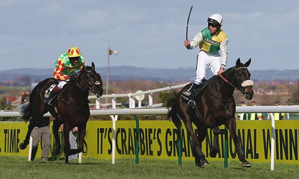 Grand National 2016 Runner By Runner Guide And Betting Tips
