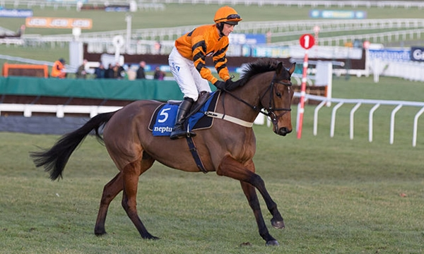 Thistlecrack is hot favourite for the World Hurdle at Cheltenham