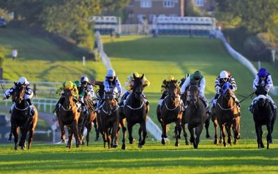 Leicester Racing Tips 25/08/2016