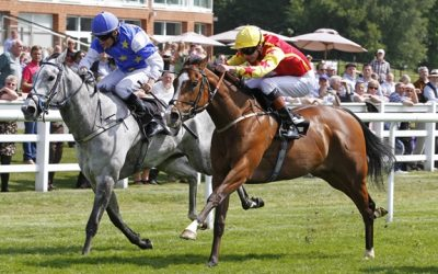 Lingfield Racing Tips 24/08/2016