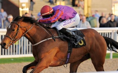 Catterick Racing Tips 24/08/2016