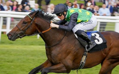 Newbury 22/10/2016 – Horris Hill Stakes Preview