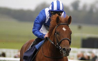 Doncaster Racing Tips 22/10/2016