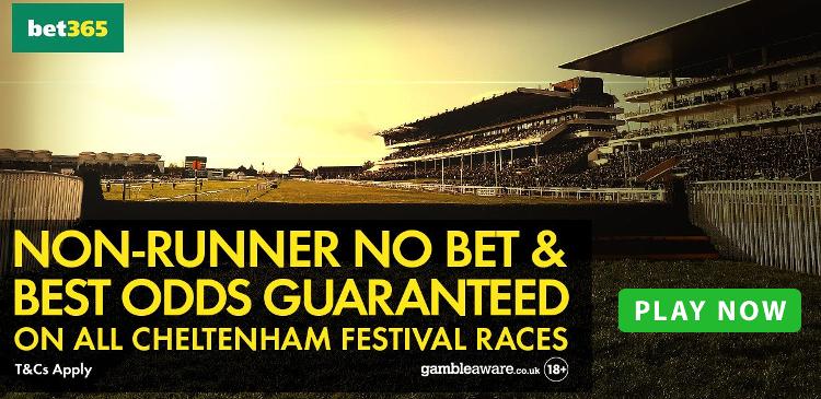 Cheltenham Betting offer