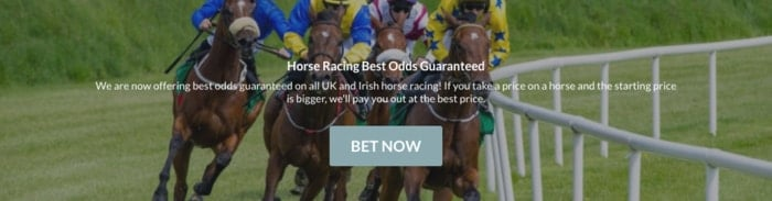 Black Type Horse Racing Best Odds Guaranteed Promotion