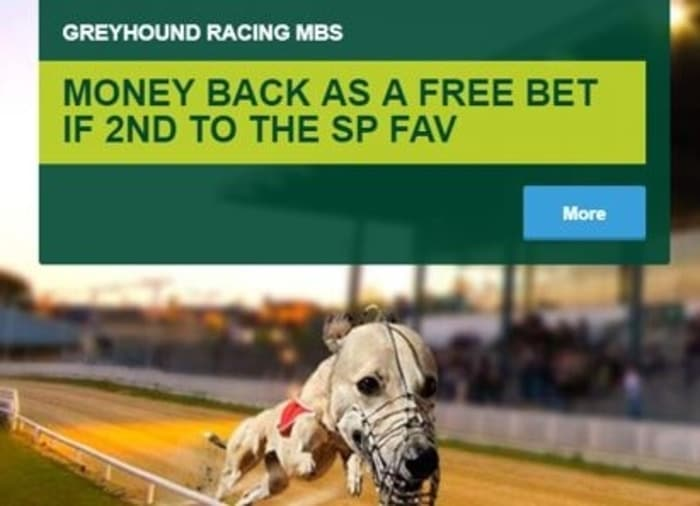 paddy power greyhound racing money back special