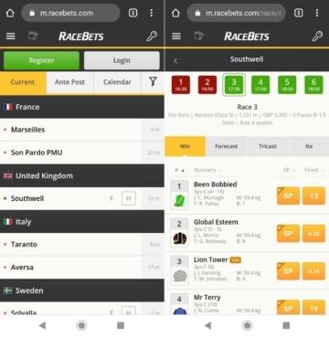 racebets betting on mobile